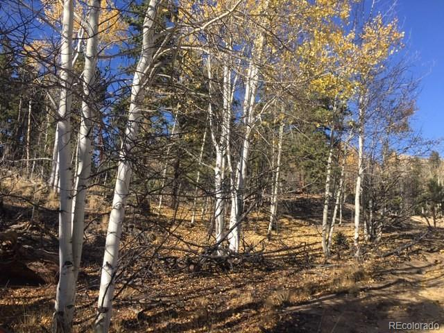 Views * Trews * power adjacent *Property is located across near BLM land  with magnificent views, rock formations & tree cover of Pine and Aspen. The beauty of mountain air, quiet privacy and certainly wildlife will captivate your everyday here.  The Buffalo is located 15 air miles east of Fairplay and near access to Pike National Forest and San Isabel National Forest which has abundant recreation opportunities of hunting, fishing (private lakes), jeeping, hiking, snow-shoeing, cross country skiing and the like.  Buyer to pay HOA transfer fee both lots need to go together
