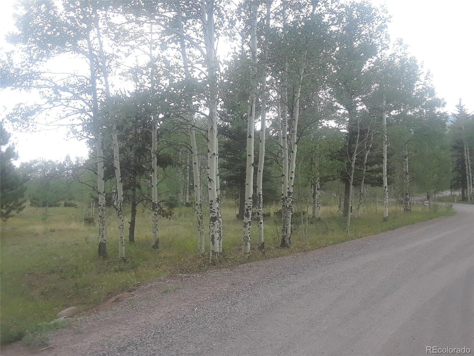 Photo of Bear Paw Court, Antonito, CO 81120