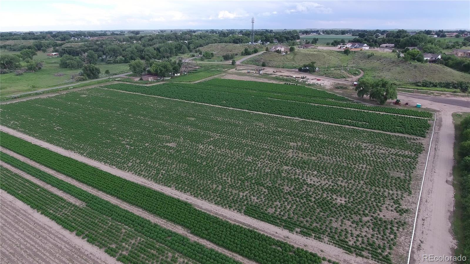 This prime 65+ Acre Hemp Farm is licensed, and located just minutes East of Pueblo Colorado.  The possibility of the additional 10 acres are endless. The property features 8 hoop houses 20x40 each built-in 2019, 1 large temperature-controlled greenhouse 42x108 built-in 2018, a warehouse 42x240 built-in 2017, 60x24 office trailers, and several storage containers. With Arkansas River water rights and a Well, water is not a limiting factor on this facility! This property has high-speed fiber optic internet. Other items included in the sale of this property are the security fence, security system, all irrigation, and pumping equipment. Additional items such as a tractor, utility truck, and miscellaneous farm equipment are available for sale separately.