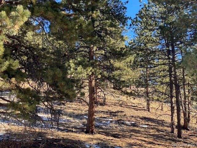 Beautiful Mountain Views .  Near the North fork of  South Platte River and the Ben Tyler Trailhead (known for snowshoeing, hiking, appreciating nature and mountain lore.  Has both Trees and Potential.  Shawnee offers a small community appeal and this home site can be yours.
