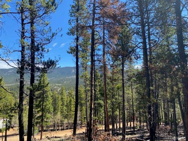 Bring Offer *10 Lots*beautiful land, end of the road culdesac,lots of trees, sloping  and mountain VIEWS and backs to large parcel... could  possibly be 2 sites.. VALUE*private fishing, close to National Forest
