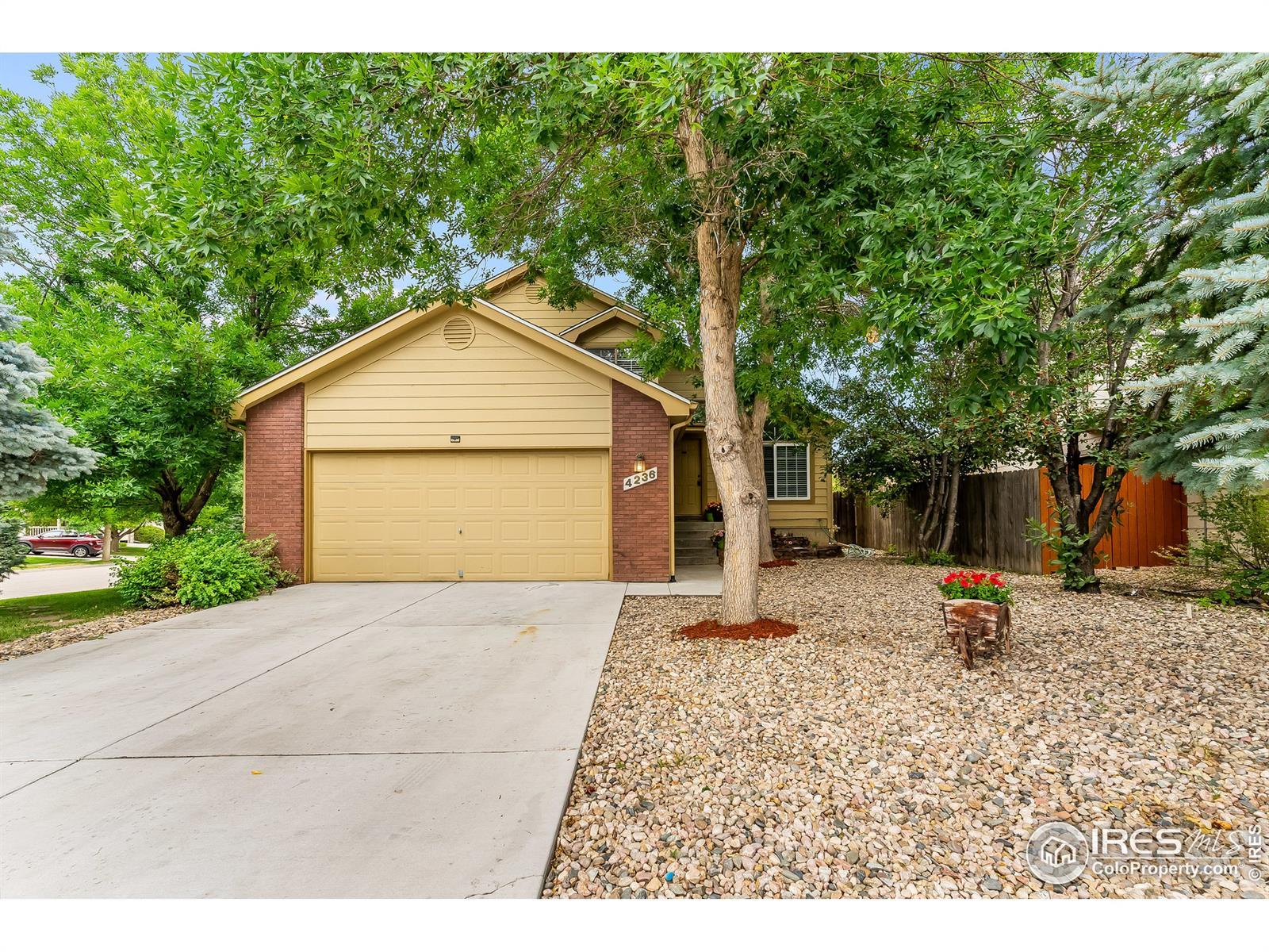 Photo of 4236  Winterstone Drive, Fort Collins, CO 80525