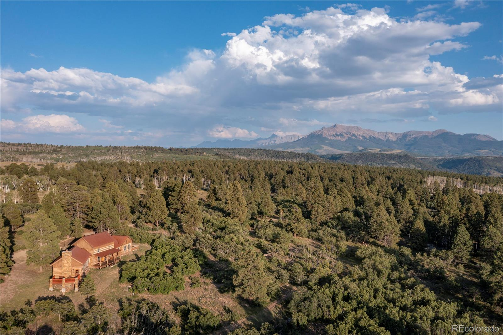 1250 Mckenzie Springs Road, Placerville, CO 81430