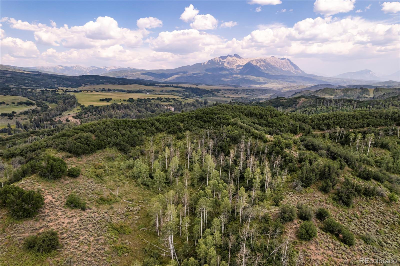 Photo of 2555  County Road 265, Somerset, CO 81434