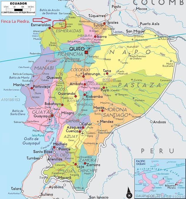 LA PIEDRA MONTALVO DEL RIO VERDE, Other County - Not In Usa, FL 00000