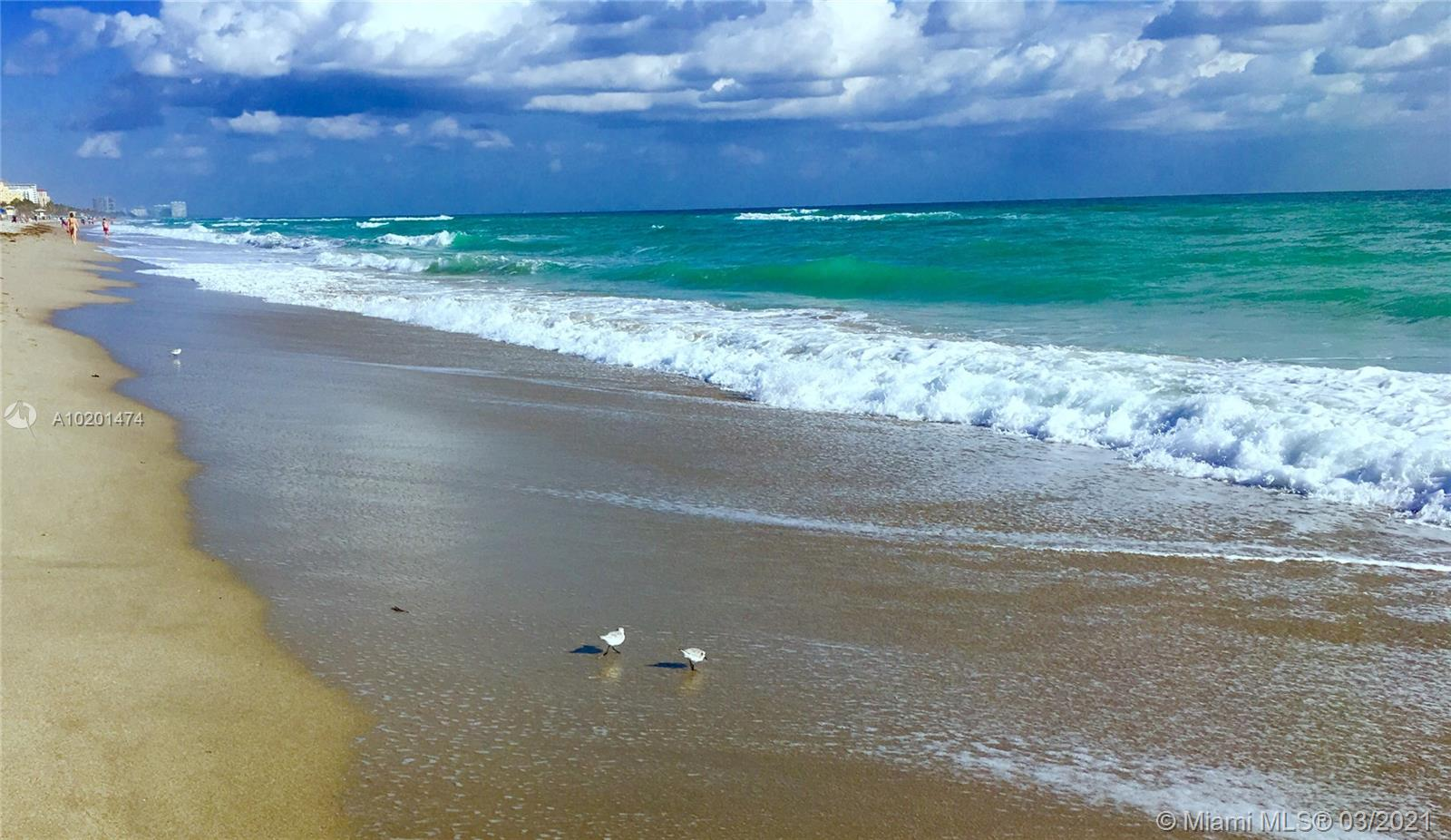 495 Ocean Blvd, Golden Beach, Florida image 7