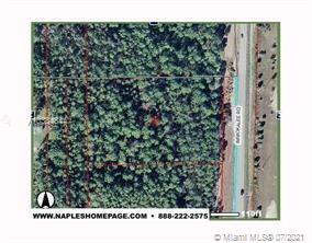 338200 IMMOKALEE RD.  For Sale A10334844, FL