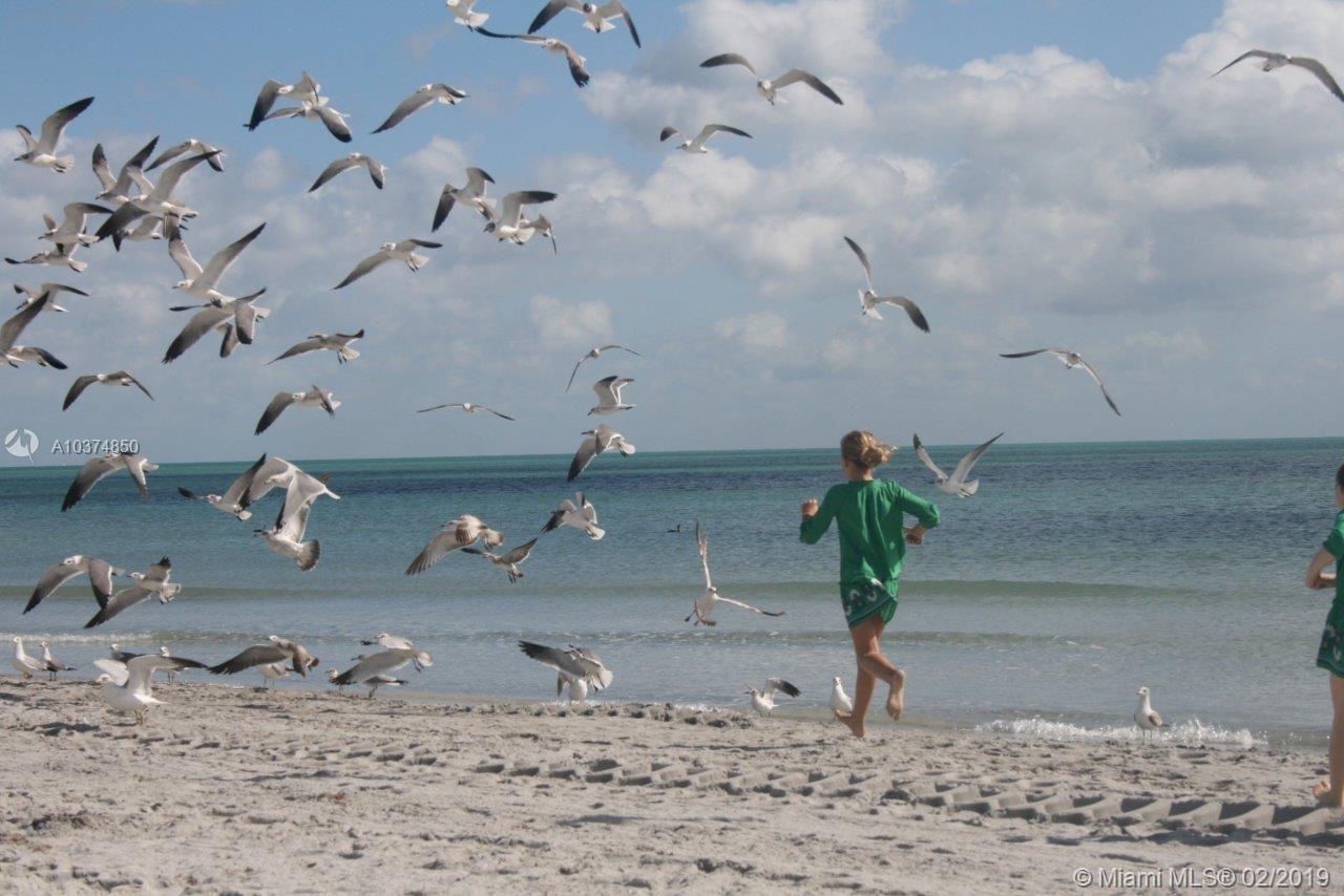 460 W Matheson Dr, Key Biscayne, Florida image 1