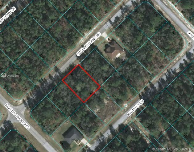 0 SW 149th Lane RD, Other City - In The State Of Florida, FL 34473