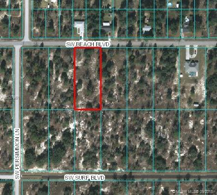 0 SW Beach BLVD, Other City - In The State Of Florida, FL 34431