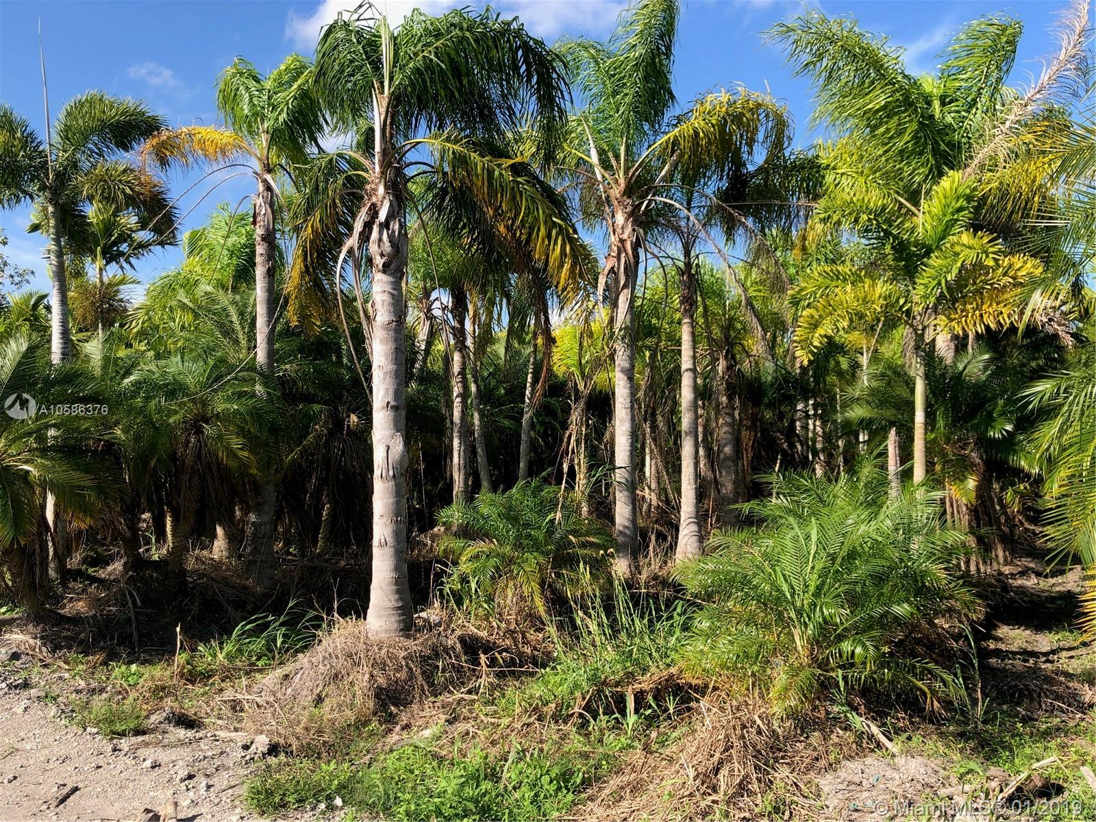 B/W SW 312th St & SW 197th Ave  For Sale A10586376, FL