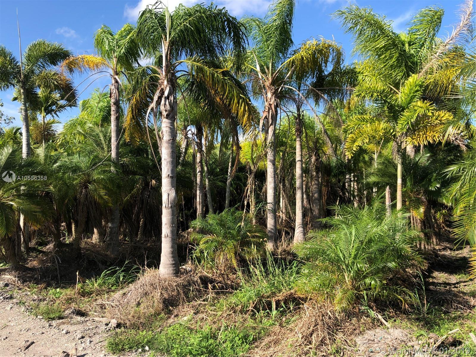 B/W 398th ST & SW 210th Ave  For Sale A10586358, FL