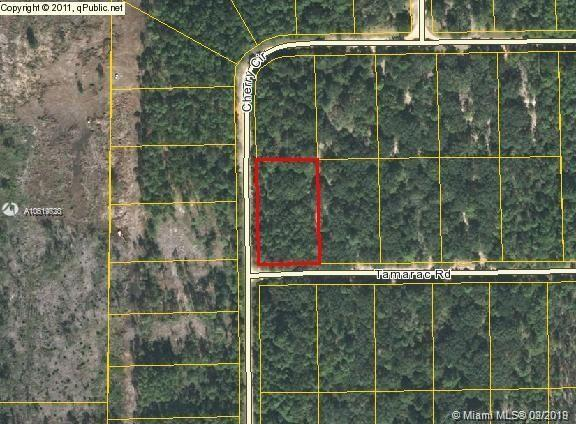 LOT 20 BLK C TAMARAC, Other City - In The State Of Florida, FL 32420