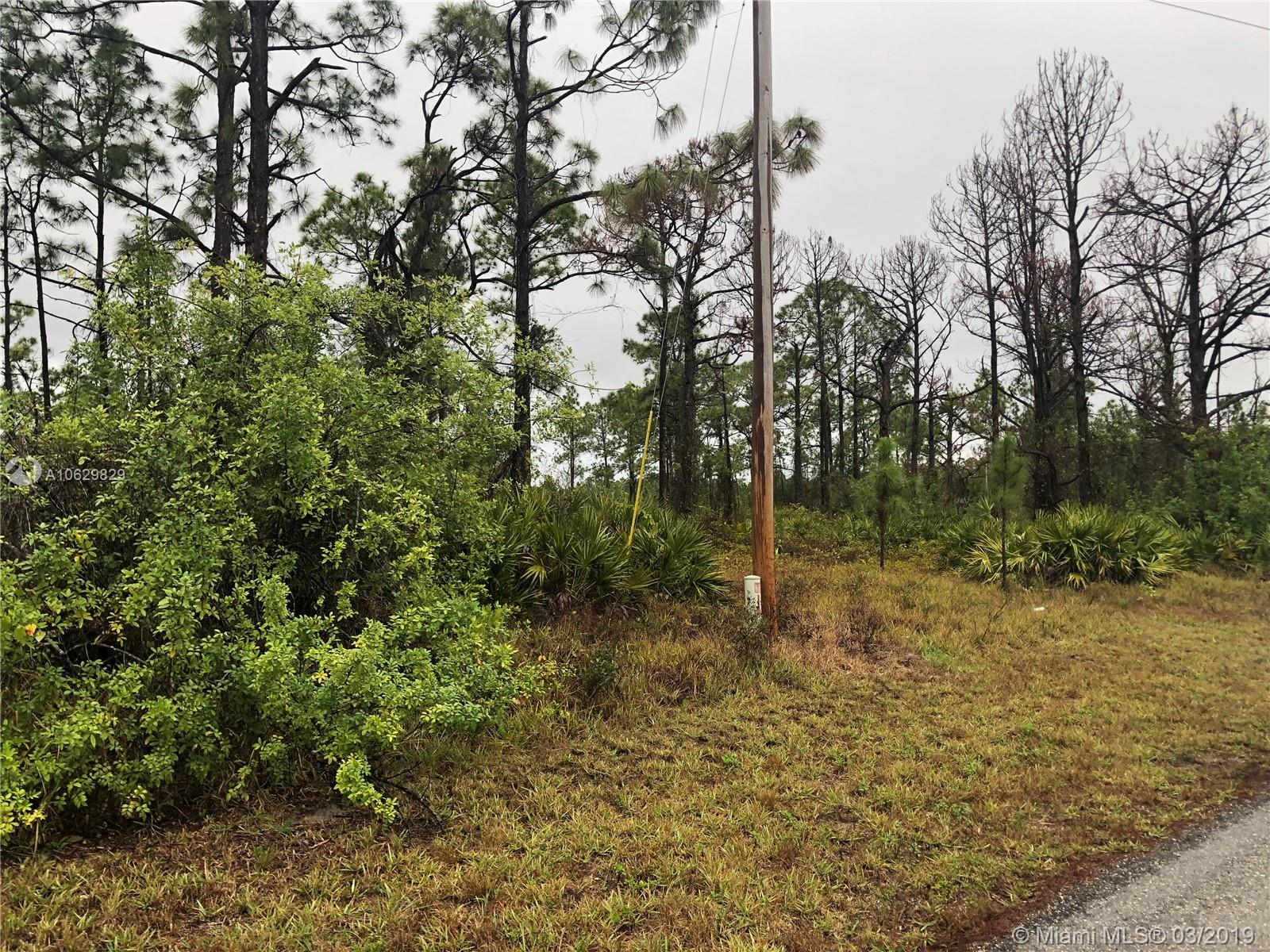 1051 Lilac St E, Other City - In The State Of Florida, FL 33974