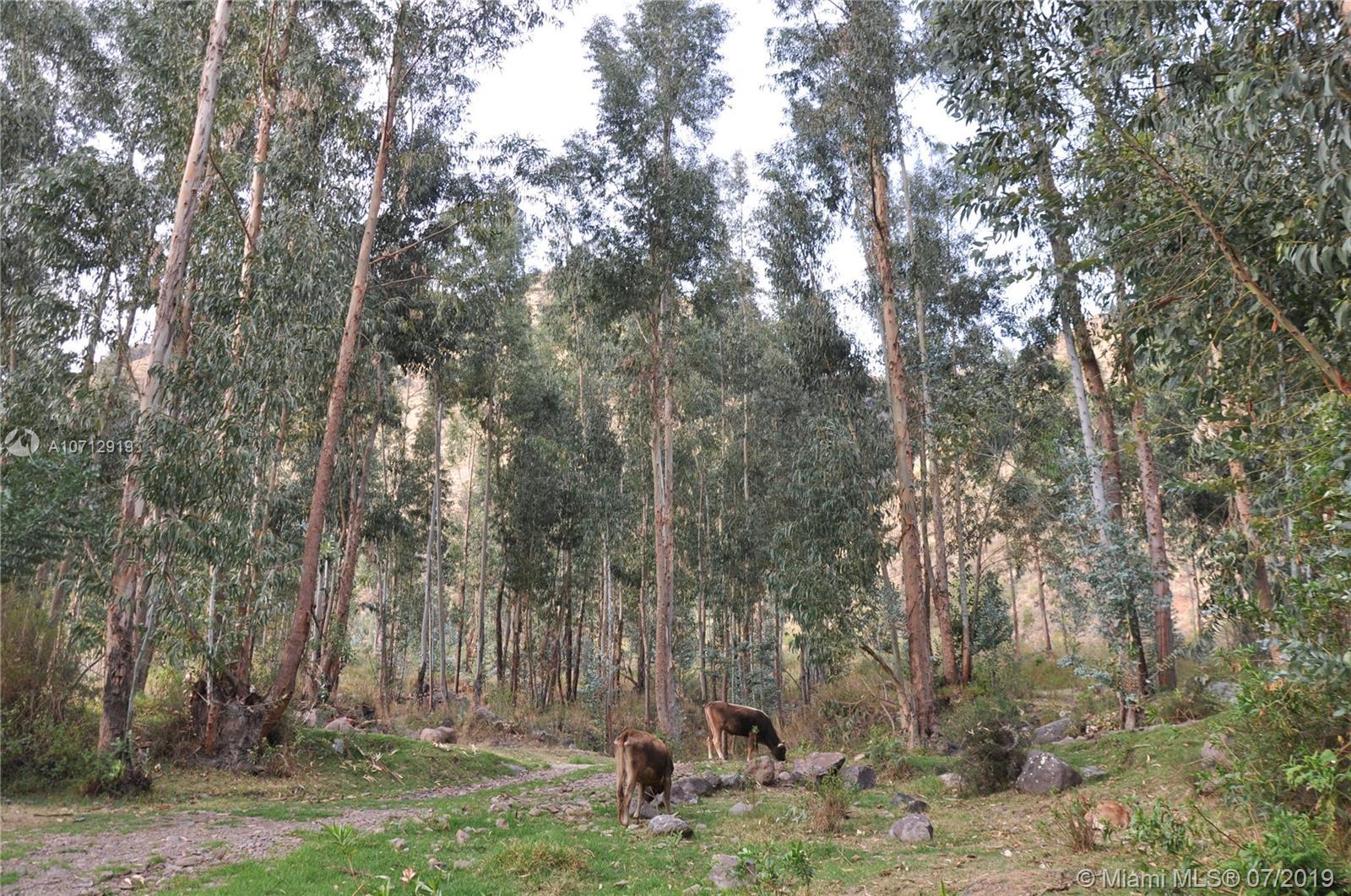 00 Cusco, Peru, Other, AL 00000