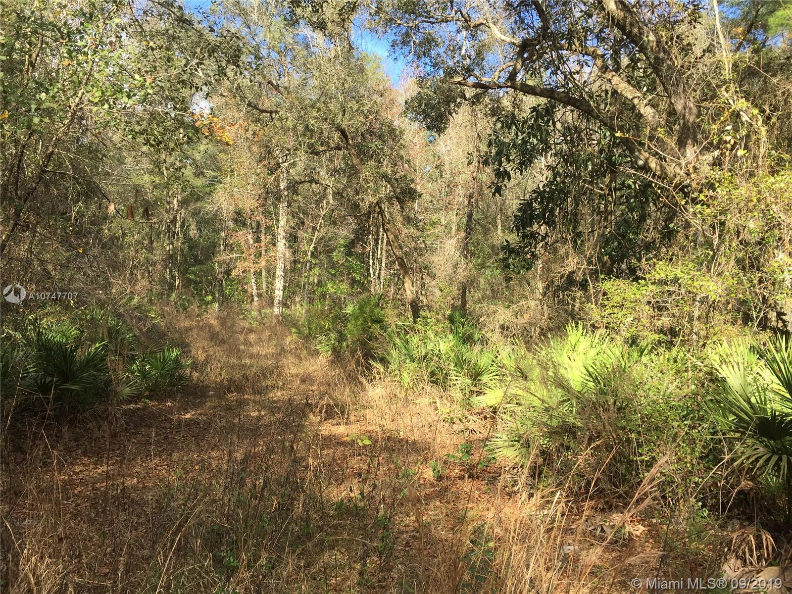 472 SW Stonich Ln, Other City - In The State Of Florida, FL 32024