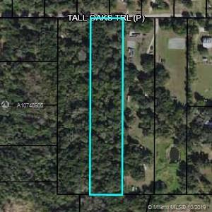 156 Tall Oaks TR, Other City - In The State Of Florida, FL 33890