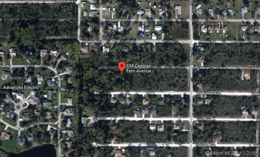 334 CASPIAN TERN AVE, Other City - In The State Of Florida, FL 33872