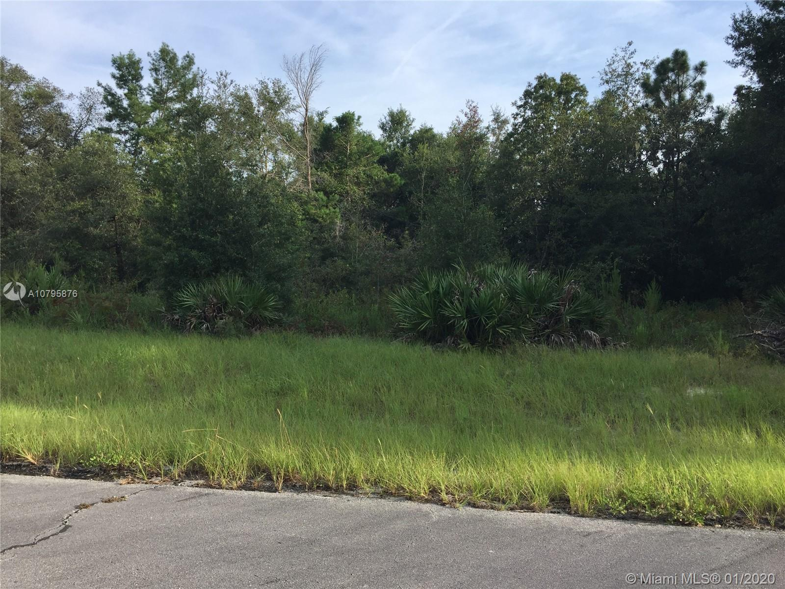 0 SW 138th ST, Other City - In The State Of Florida, FL 34473