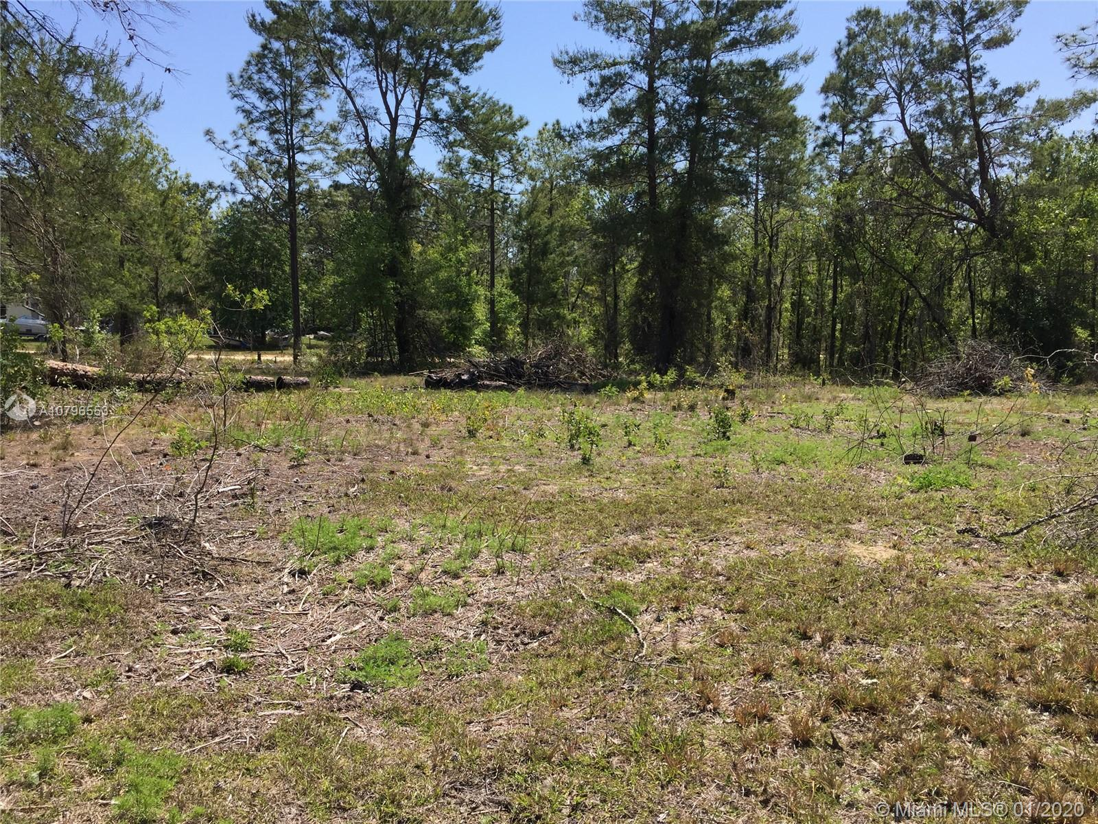 0 NE 130th Ave, Other City - In The State Of Florida, FL 32696