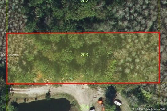 Holopaw Rd, Other City - In The State Of Florida, FL 34773