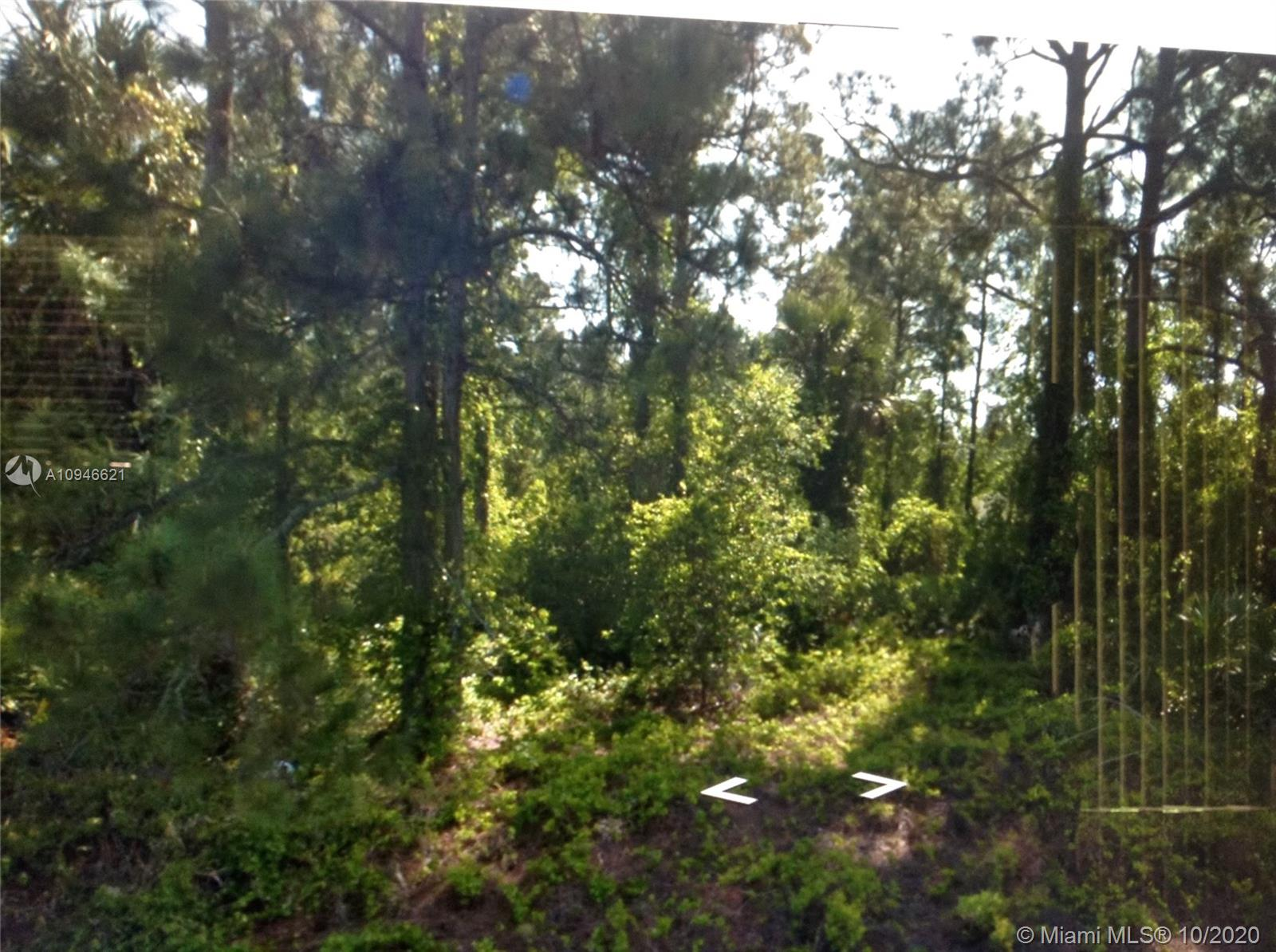 133 NW Hillock Ave  For Sale A10946621, FL