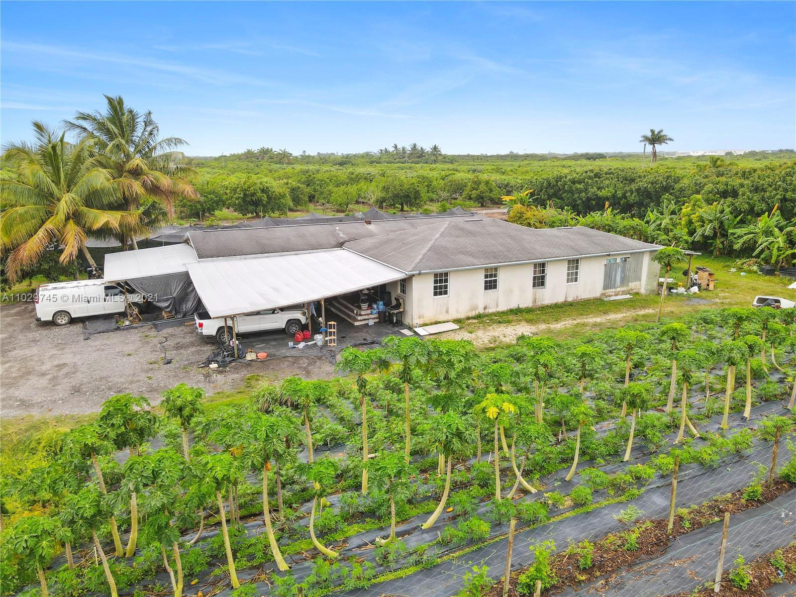 THAI PLANTATION ON  APPROX 4.5 ACRES WITH LARGE 4 BED 3 BATH FARMHOUSE..THE HOUSE COULD BE A GREAT FLIP.. THE FARM  FEATURES:THAI BAI TIER, DOKKRE, BAMBOO, LONG BEAN, GREEN BEAN , THAI WHITE FLOWER, LONGAN,THAI BASIL ,PAPAYA, SURGAR APPLE, CAMITO,THAI BANANA,YUCCA LEAF, JACK FRUIT PLUS ON SITE.  ALSO INCLUDED IS THE VAN,.COOLER,MOWER, GOLF CART.ETC. THIS IS A SUPER OPPORTUNITY TO HAVE INSTANT INCOME...
