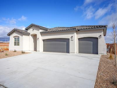 Brand New Abrazo home in Lomas Encantadas. With just under 1700 square feet.  Smart technology plus 2 car and extended great room. Flooring and cabinetry upgrade.   Full new home warranty included.