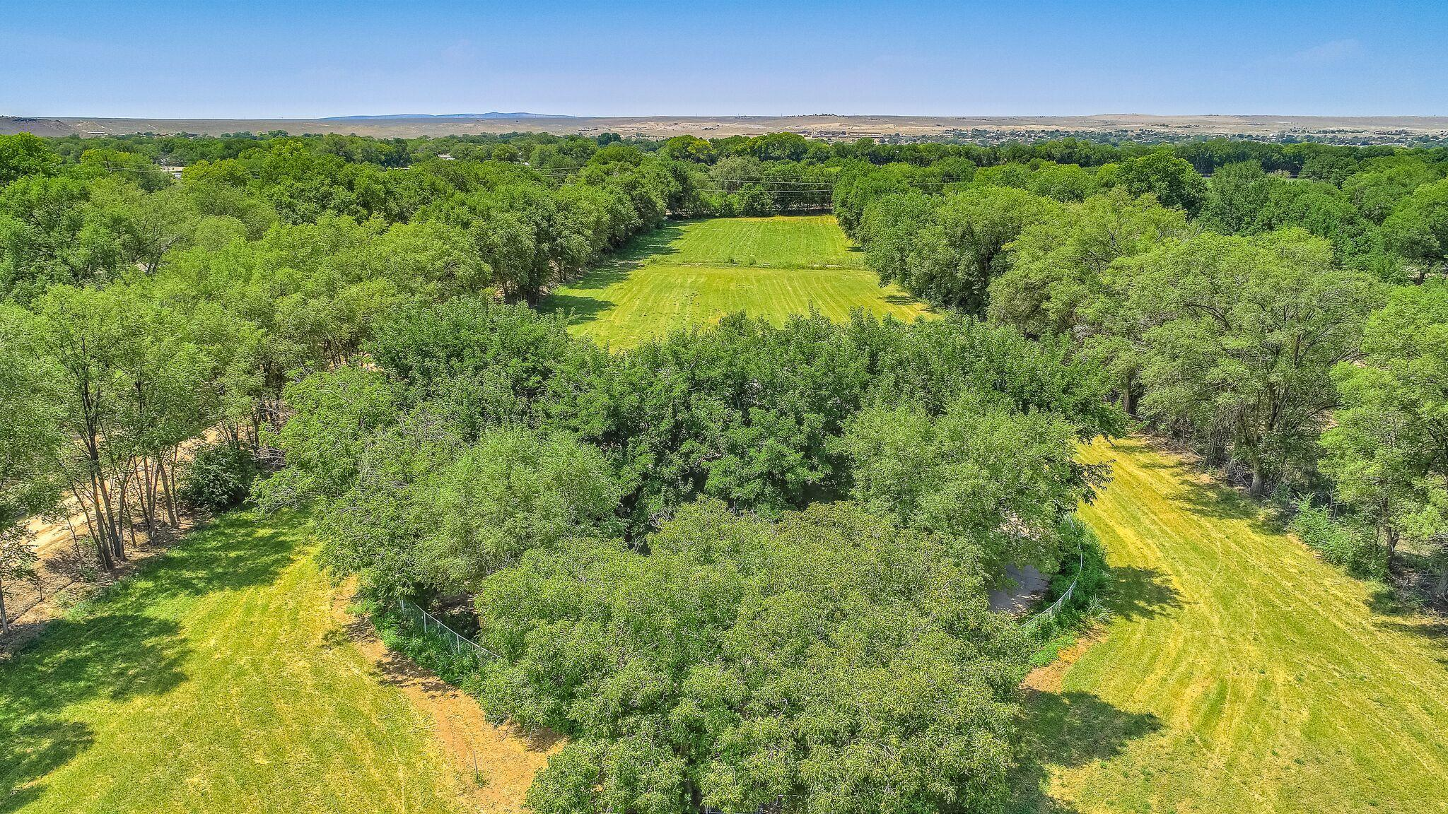 Nearly 6 acres in the heart of the Rio Grande green belt. Water rights for ditch irrigation, and a private well for home use. The fenced and gated property can accommodate farming and horses. A large 4 car garage with attached workshop and storage has over 1,800sf of space. An orchard of about 20 trees includes walnuts, cherries, plums, pears, peaches, apricots, and apples. The front gate is set-back over 400 feet from the road, and the 100-or-so perimeter trees provide unmatched seclusion and privacy. The convenient location means less than 3-minutes to I-25, 10-minutes to shopping and dining, and 6-minutes to Isleta Casino and Resort.  The nearly 2,000sf home was remodeled in 2007/2008, and has been lovingly maintained.