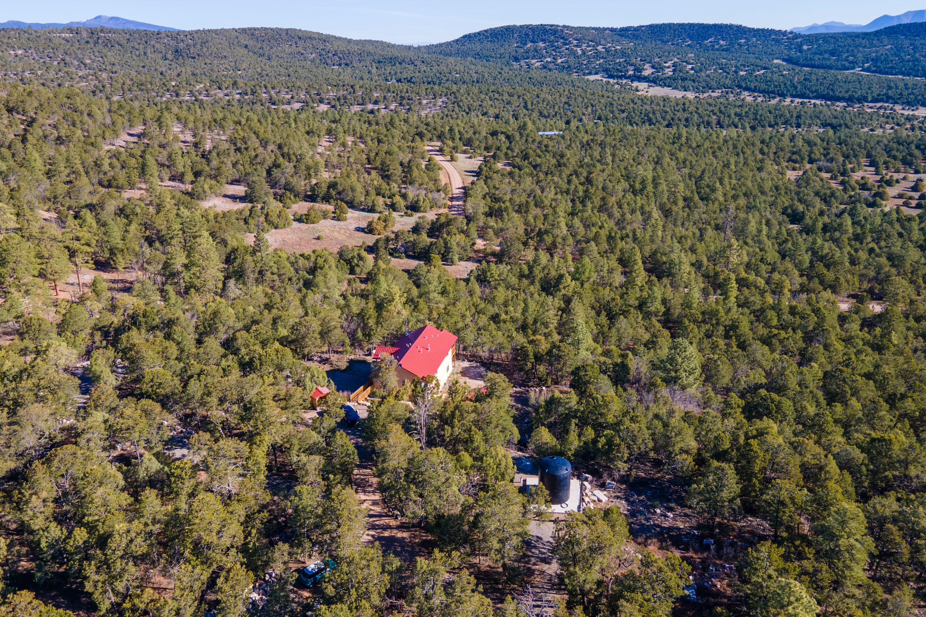 Your mountain retreat awaits nestled into the pine trees in the Cibola National Forest!! Located in the Woodland Hills Estates the sale includes a total of 5 acres, the current home site plus the adjacent lot.  This beautiful home was built in 2017 and boasts a wonderful open floor plan with tons of light, lots of windows, gorgeous wood floors, distinctive wood beam accents, custom cabinetry and a delightful kitchen with walk in pantry granite countertops, stainless appliances, farm sink and views of the forest. Spacious master bedroom retreat with a bright master bath with double sinks, beautiful shower and walk in closet.   Wonderful deck with sweeping views.  Two additional bedrooms with jack and jill bath.  Super garage with tons of storage and extra workshop space.