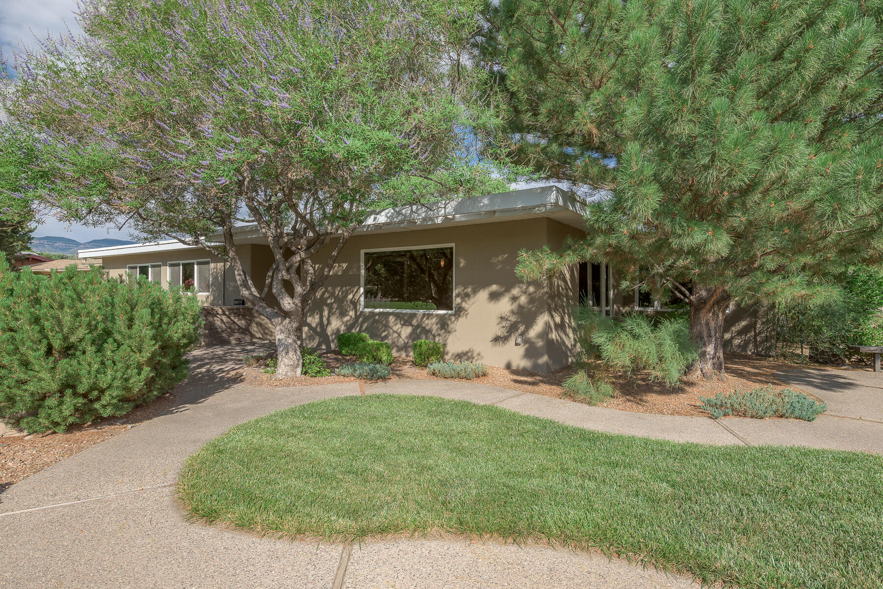 Extraordinary NE, mid-century-modern-transitional situated on La Palomita Park! This spectacular home speaks quality of craftsmanship with hyper-attentive detail to custom quality features: NEW insulated positive-pitched TPO Roof-2019; NEW AC Unit 2021; NEW plush carpet in bedrooms 2, 3, & 4; NEWLY remodeled Master Bath, exquisite modern lines with quartz waterfall vanity; Stunning Bellawood Brazilian Koa Tiger flooring in living, formal dining, and MBR; Kitchen boasts Ash Wood cabinetry with custom slide-outs, ''Red Dragon'' Level 5 granite tops, SS KitchenAide appliances; Milgard windows/exterior doors with bronze-tint, some mirrored. Lovely, quaint, fully irrigated, mature, professional landscape complete with gunite swimming pool and rec room. Come see this architectural delight!