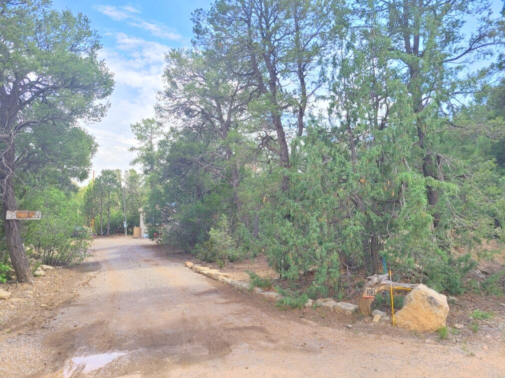 Own your own piece of paradise on this one acre, heavily wooded and private lot in the East Mountains! Has all utilities! Mostly paved roads leading to your new homestead. A short drive from town; Enjoy the serenity of the mountains. Large shed for tools, toys and more!