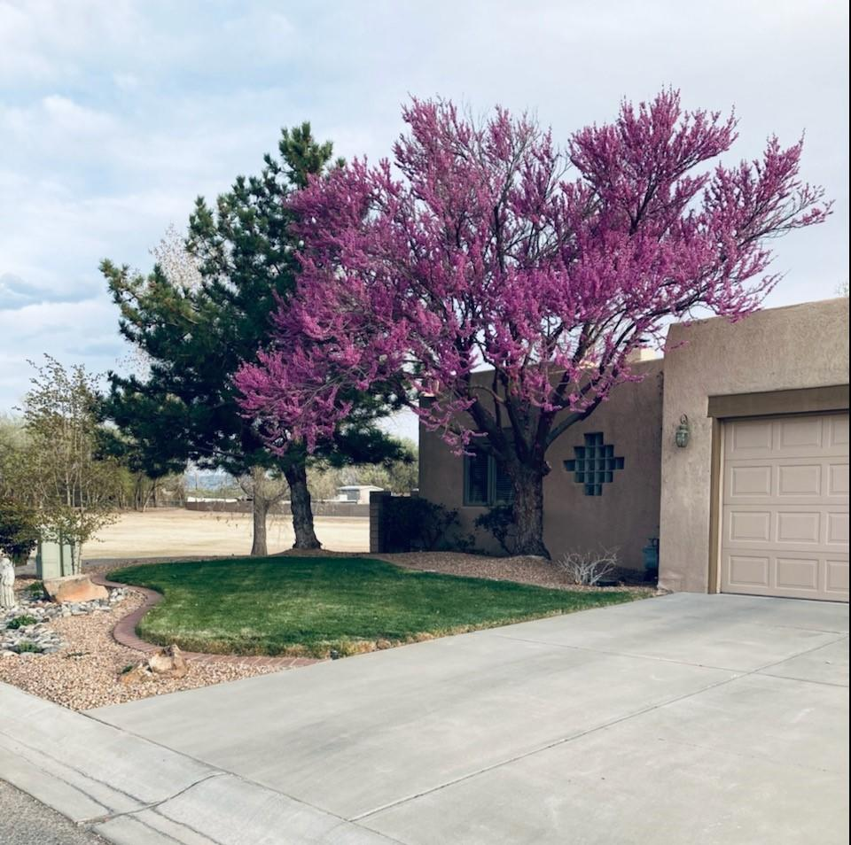 This is a GEM of a home, in a small gated community, with its own open space .  This home has had just one owner and it  is in superb condition.  The home sits at the end of the street , next to the open space, so it is very private and quiet.The grounds are lush with grass, trees, flowers and bushes, all trimmed to fit perfectly in this space.  The covered patio is extended with a pergola covered by an amazing Wisteria. Step inside to a truly welcoming and comfortable home. There are upgrades galore, from wrapped wood windows, to French sliders, large windows, built-ins, and a Kiva fireplace.   Beautiful  Silhouette Blinds throughout.  Newer, H/W heater, W/D, Refrigerator, microwave, carpet and toilets.   Ready for you now.