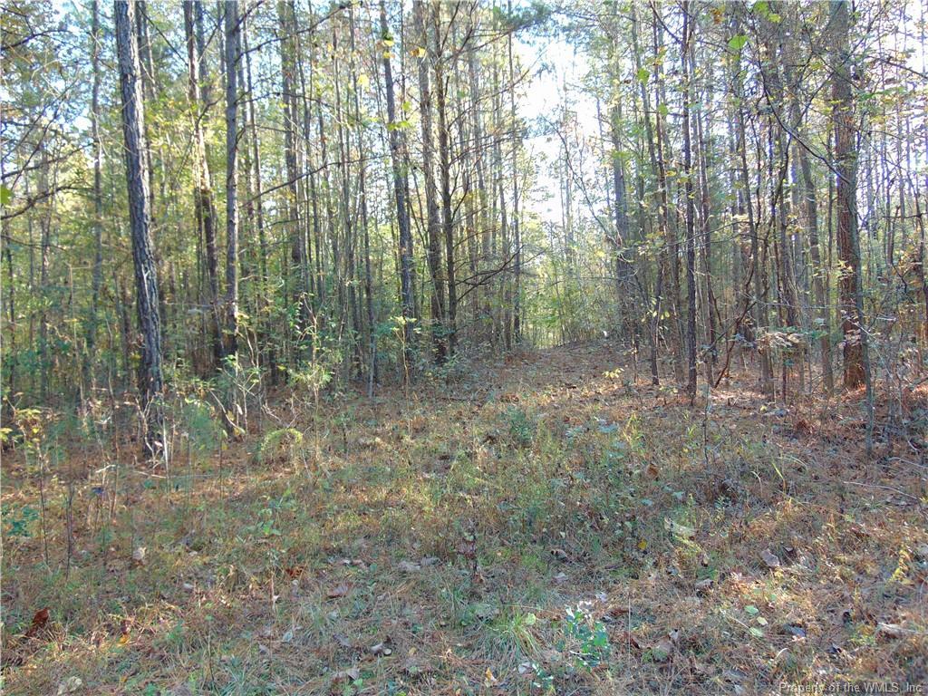 93 acres Lebanon Road, Surry, VA 23881